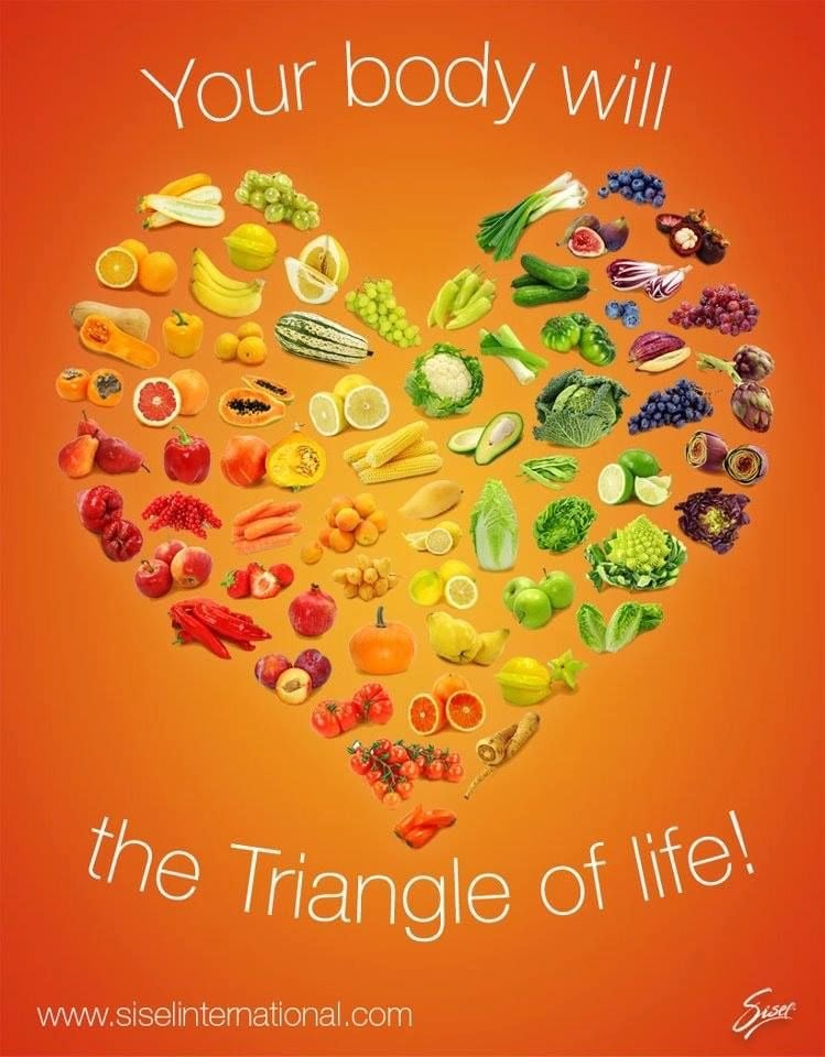 Sisel_Triangle_of_Life