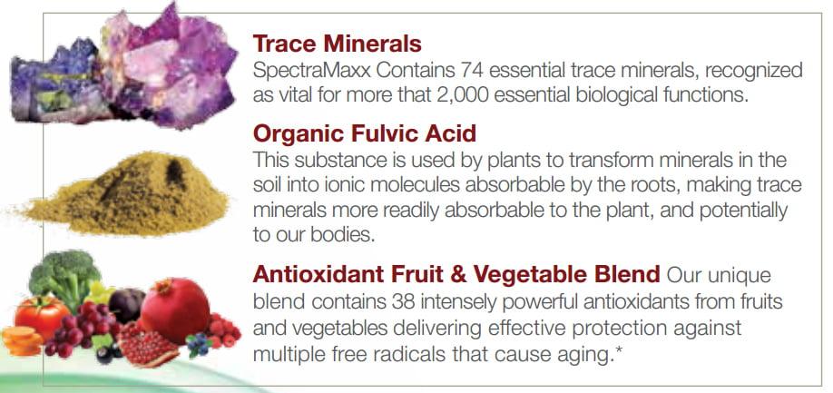 SpectraMaxx Trace Minerals Fulvc Acid Antioxidants