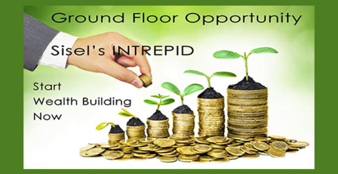 Ground Floor Business Opportunity Sisels INTREPID