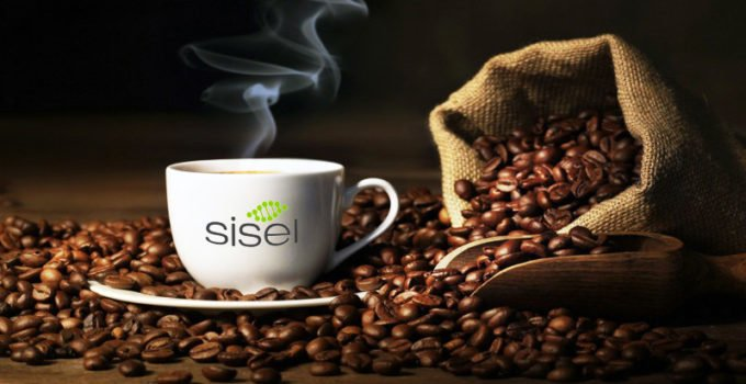 Healthy Coffee - Sisel Coffee Kaffe panama boquete geisha coffee - Try a Free Sisel Coffee Sample Today
