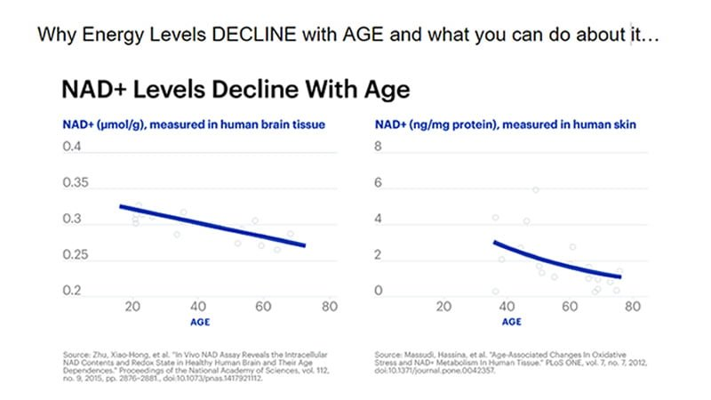 Why energy levels decline as we age