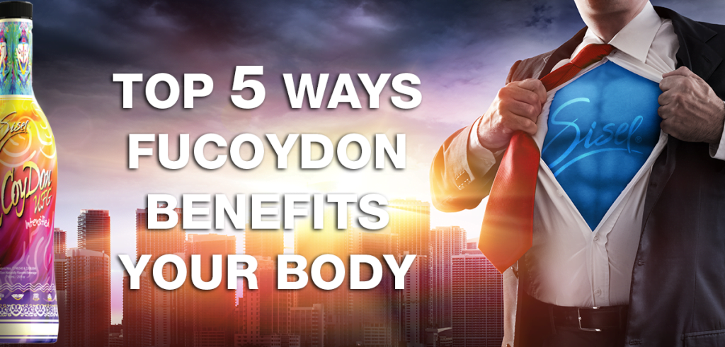 5 reasons to drink Sisel's Fucoydon