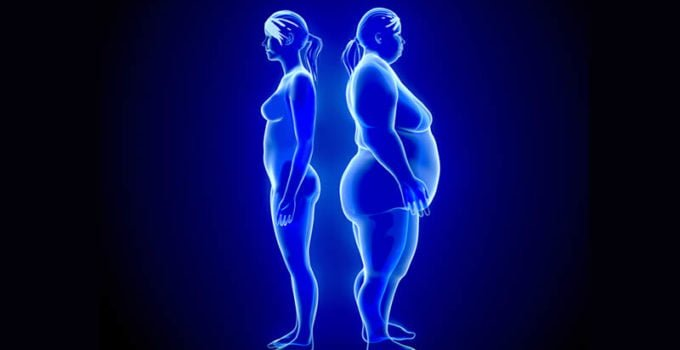 weight loss and toxins